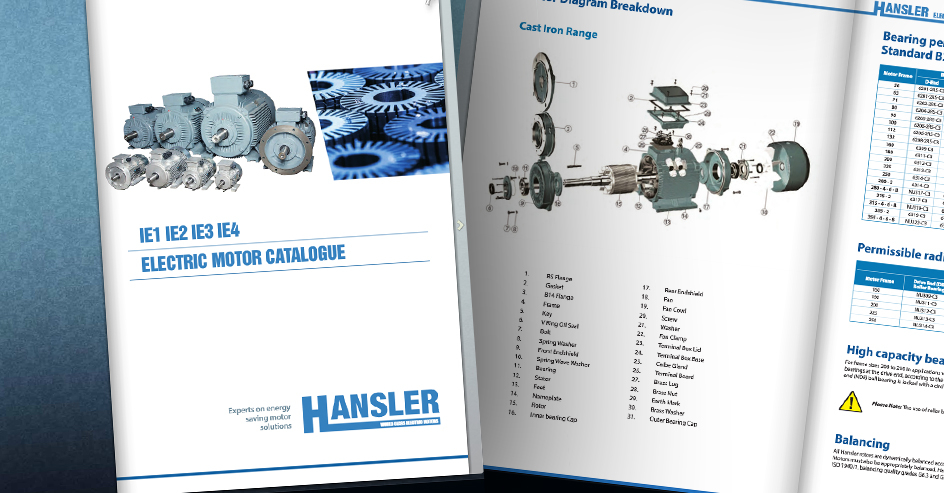 "<a href=""http://hanslermotors.com/catalogue-request"">Download our new Catalogue</a>"